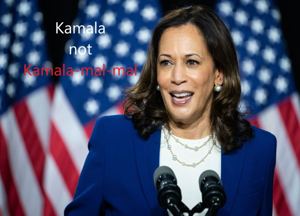 This image has an empty alt attribute; its file name is kamala1.jpg